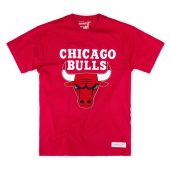 Футболка Mitchell & Ness - Chicago Bulls Team Logo Tee (red)