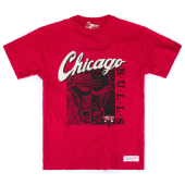 Футболка Mitchell & Ness - Chicago Bulls Split Logo Tee (red)