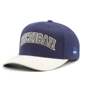 Бейсболка Mitchell & Ness - Michigan Wolverines Cord 110 Snapback